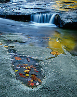 Reflections and leaves in fall color in a pool along Looking Glass Creek; Pisgah National Forest, NC