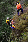 "Steve Mullensky | for the Kitsap Sun  Thick brush doesn't hamper the progress of theJefferson County Search and Rescue crew. Here they go cross-country during a recent training exercise in the Olympic National Forest by cutting a path through the brush in order to get their ""victim"" to safety in the fastest way possible.   ..."