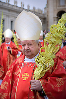 Cardinal Stanislaw Dziwisz,Pope Francis during of the Palm Sunday celebration on St Peter's square at the Vatican.April 13,2014