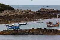 Royaume-Uni, îles Anglo-Normandes, île de Guernesey,  Torteval: le petit port de Portelet  // United Kingdom, Channel Islands, Guernsey island,Torteval: the small port of Portelet.