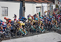 yellow jersey / GC leader Primoz Roglic (SVK/Jumbo-Visma) in the pack<br /> <br /> Stage 10 from île d'Oléron (Le Château-d'Oléron) to Île de Ré (Saint-Martin-de-Ré)(169km)<br /> <br /> 107th Tour de France 2020 (2.UWT)<br /> (the 'postponed edition' held in september)<br /> <br /> ©kramon