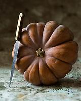 Gastronomie Générale/ Citrouille //   Pumpkin