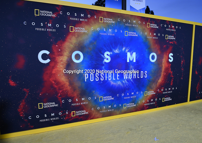 """LOS ANGELES - FEBRUARY 26: National Geographic's 2020 Los Angeles premiere of """"Cosmos: Possible Worlds"""" at Royce Hall on February 26, 2020 in Los Angeles, California. Cosmos: Possible Worlds premieres Monday, March 9 at 8/7c on National Geographic. (Photo by Frank Micelotta/National Geographic/PictureGroup)"""