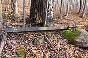 Abandoned railroad track along the Little East Pond Trail in Livermore, New Hampshire. This trail utilizes the old railroad bed of the Woodstock & Thornton Gore Railroad (1909 -1914) bed.