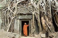 Monks at Ta Prohm.