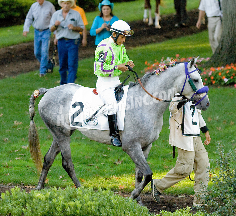 Ovour the Top before The Bob Magness Memorial Derby (gr2) at Delaware Park on 9/10/11.