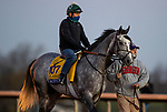 November 4, 2020: Tacitus, trained by trainer William I. Mott, exercises in preparation for the Breeders' Cup Classic at  Keeneland Racetrack in Lexington, Kentucky on November 4, 2020. Alex Evers/Eclipse Sportswire/Breeders Cup