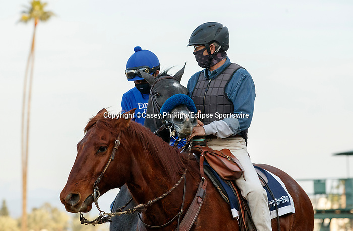 ARCADIA, CA JANUARY 3: #6 Frosteria, ridden by Mike Smith, in the post parade of the Santa Ynez Stakes (Grade ll) on January 3, 2021 at Santa Anita Park in Arcadia, CA. (Photo by Casey Phillips/EclipseSportswire/CSM)