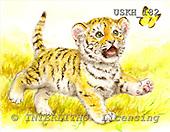 Kayomi, CUTE ANIMALS, paintings, BabyTiger_M, USKH182,#AC# illustrations, pinturas ,everyday