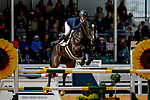 October 17, 2021: Andrea Baxter (USA), aboard Indy 500, competes during the Stadium Jumping Final at the 5* level during the Maryland Five-Star at the Fair Hill Special Event Zone in Fair Hill, Maryland on October 17, 2021. Jon Durr/Eclipse Sportswire/CSM