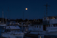 Moored boats float under the rising Full Buck Moon on a quiet night at the San Leandro Marina on San Francisco Bay.
