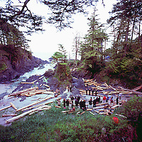 Wedding taking place in Small Cove on Pacific West Coast of Vancouver Island, Ucluelet, BC, British Columbia, Canada