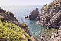 - Capraia island (Tuscan Archipelago), the Zurletto bay....- isola di Capraia (Arcipelago Toscano), la cala Zurletto