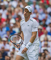 London, England, 3 th July, 2017, Tennis,  Wimbledon, Andy Murray (GBR) reacts in his openings match against Alexander Bublik (KAZ)<br /> Photo: Henk Koster/tennisimages.com