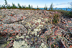 Pile of boulders Iles Basses Great Slave lake