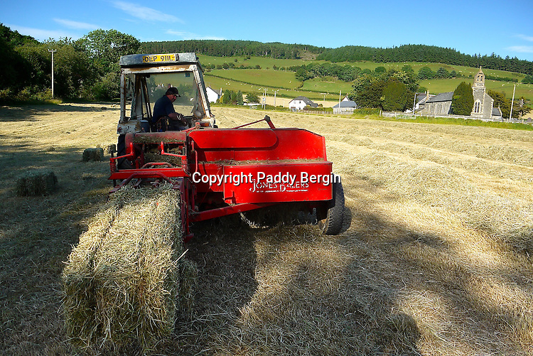 Collecting and baling hay on a small family owned farm in the village of Llanafan which is in the county of Ceredigion, West Wales. The village is situated on the north side of the beautiful Ystwyth Valley and the river eventually flows into the sea at the seaside town of Aberystwyth. Haymaking for this farm is an important time and is dependant on the weather. When its good enough and the grass is cut it is left to dry and then collected as in these photos. Local people come and help to ensure all the hay is brought in and stored in the barn.<br /> The tractor they are using is a 1953 Massey Ferguson which is still in good working order. Stock Photo by Paddy Bergin