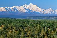 Mount Hayes of the Alaska Range, Interior Alaska