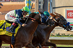 "DEL MAR, CA  AUGUST 24: #7 Catalina Cruiser, ridden by Flavien Prat, just edges out  #4 Giant Expectations, ridden by Drayden Van Dyke, to win the Pat O'Brien Stakes (Grade ll) ""Win and You're In Breeders' Cup Dirt Mile Division"" on August 23, 2019 at Del Mar Thoroughbred Club in Del Mar, CA.  ( Photo by Casey Phillips/Eclipse Sportswire/CSM)"