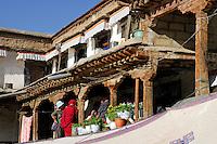 Residential apartments at Meru Sarpa Monastery, Lhasa, Tibet, China.