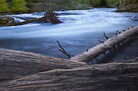 The annuyal Spring snowmelt creates rushing torrents that can dislodge large boulders and even entire trees which in trun reshape the course of streams and rivers.