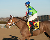 Ruby Lips finished second to Princess Sylmar in the Busanda but was taken down for interfering with Asiya in the stretch.