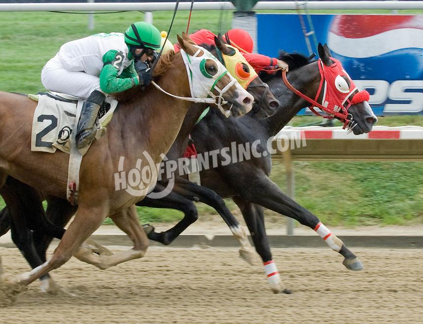 Enduro winning at Delaware Park on 8/7/10
