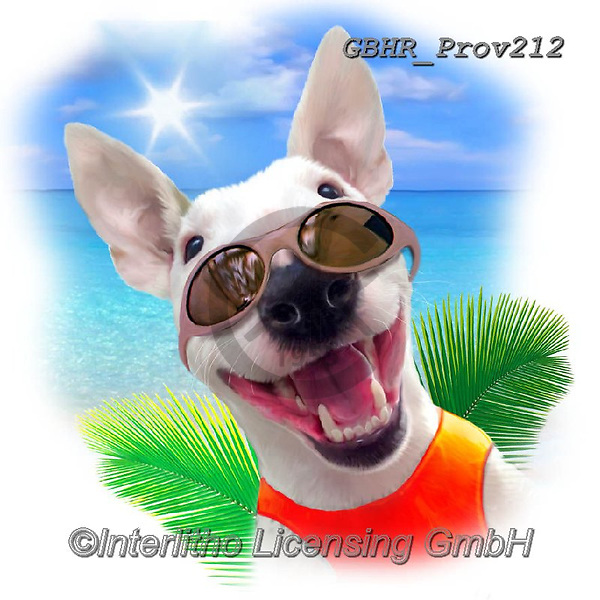 Howard, REALISTIC ANIMALS, REALISTISCHE TIERE, ANIMALES REALISTICOS, paintings+++++Bull Terrier,GBHRPROV212,#a#, EVERYDAY ,selfies