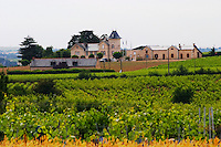 Vineyard. Winery building. Chateau de la Soucherie, anjou, Loire, France