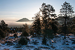 Winter morning on Prospect Mountain, Olympus Mtn above fog, Estes Park, Colorado, USA