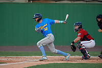 Myrtle Beach Pelicans Zac Taylor (32) at bat in front of catcher Jakson Reetz during a Carolina League game against the Potomac Nationals on August 14, 2019 at Northwest Federal Field at Pfitzner Stadium in Woodbridge, Virginia.  Potomac defeated Myrtle Beach 7-0.  (Mike Janes/Four Seam Images)
