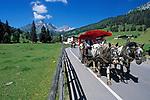 Oesterreich, Salzburger Land, Filzmoos: Kutschfahrt vor der Grossen Bischofsmuetze (2.458 m) | Austria, Salzburger Land, Filzmoos: horse-drwan carriage at Gr. Bischofsmuetze Mountain (2.458 m)
