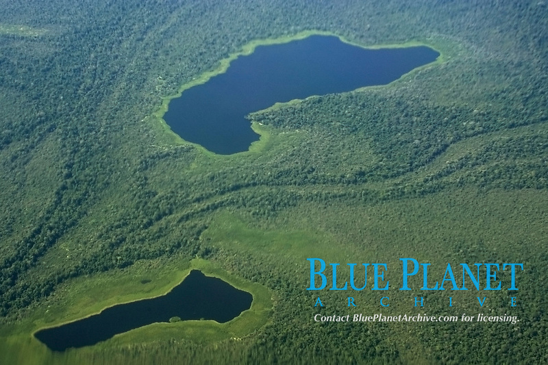 Flooded tropical rain forest, aerial view, Amazonas, Brazil