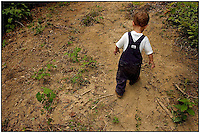 A toddler wearing blue overalls heads out for a walk in the woods.   Model released image can be used to illustrate many purposes.