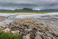Landscape along the Alaska Peninsula coast, Katmai National Park, southwest, Alaska. Aleutian mountain range covered in clouds.