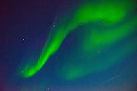 E. Greenland, On the FRAM Hurtigruten Cruise ship. Kajser Franz Joseph Fjord. The northern lights.