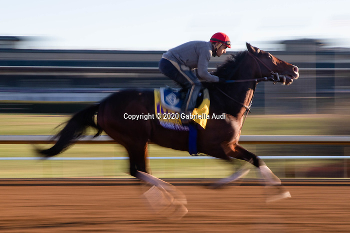 November 4, 2020: Higher Power, trained by trainer John W. Sadler, exercises in preparation for the Breeders' Cup Classic at Keeneland Racetrack in Lexington, Kentucky on November 4, 2020. Gabriella Audi/Eclipse Sportswire/Breeder's Cup/CSM