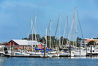 Sailboats docked in Cape Charles Harbor, Cape Charles, Virginia, USA