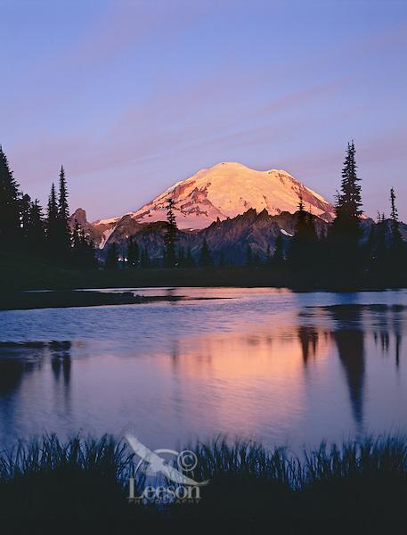 Mount Rainier at sunrise near Tipsoo Lake (small tarn above Lake), Mount Rainier National Park, Washington.