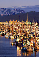 BOATS crowd the HARBOR of HOMER,  ALASKA