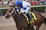 HALLANDALE BEACH, FL - FEB 3:  Take Charge Paula #4 with jockey Paco Lopez wins the Forward Gal GIII Stakes at Gulfstream Park on February 3, 2018 in Hallandale Beach, Florida. (Photo by Liz Lamont/Eclipse Sportswire/Getty Images)