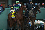ARCADIA, CA  MARCH 10:  #4 Giant Expectations, ridden by Corey Nakatani, coming onto the track before the start of the Santa Anita Handicap (Grade l) on March 10, 2018, at Santa Anita Park in Arcadia, CA. (Photo by Casey Phillips/ Eclipse Sportswire/ Getty Images)
