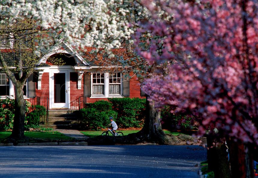 """#JP0989 The Arrival Of Spring On DeHart Rd, Maplewood, NJ"