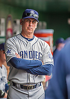 26 April 2014: San Diego Padres Manager Bud Black watches play from the dugout during game action against the Washington Nationals at Nationals Park in Washington, DC. The Nationals defeated the Padres 4-0 to take the third game of their 4-game series. Mandatory Credit: Ed Wolfstein Photo *** RAW (NEF) Image File Available ***