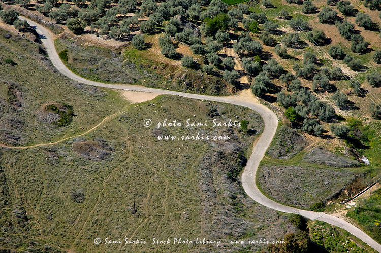 Winding rural road running through olive trees, Ronda, Spain.