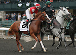 Tiger Bourbon and Rosie Napravnik in the 23rd running of the Bourbon Grade 3 $150,000 at Keeneland Race Course.   October 06, 2013.