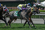 """ARCADIA, CA  May 28:  #5 Hunt, ridden by Flavien Prat,  #6 Heart to Heart, ridden by Julien Leparoux, and #1 Om, ridden by Joseph Talamo, in the stretch of the Shoemaker Mile (Grade l), Breeders'Cup """"Win and You're in Mile Division"""" on May 28, 2018, at Santa Anita Park in Arcadia, CA. (Photo by Casey Phillips/Eclipse Sportswire/Getty Images)"""