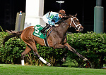 June 15, 2019: Hard Legacy, trained by Norm Casse, wins the Regret S. (G3) at Churchill Downs on June 15, 2019 in Louisville, KY. Jessica Morgan/ESW/CSM