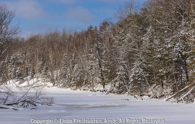 The Chippewa River in northern Wisconsin. Note the bald eagle perched in a snag.