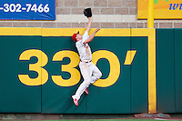 Stephen Piscotty (12) of the Springfield Cardinals leaps to catch a ball over the wall during a game against the Northwest Arkansas Naturals at Hammons Field on August 20, 2013 in Springfield, Missouri. (David Welker/Four Seam Images)