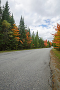 Signs of autumn foliage along Trudeau Road in Bethlehem, New Hampshire USA on the last day of summer.
